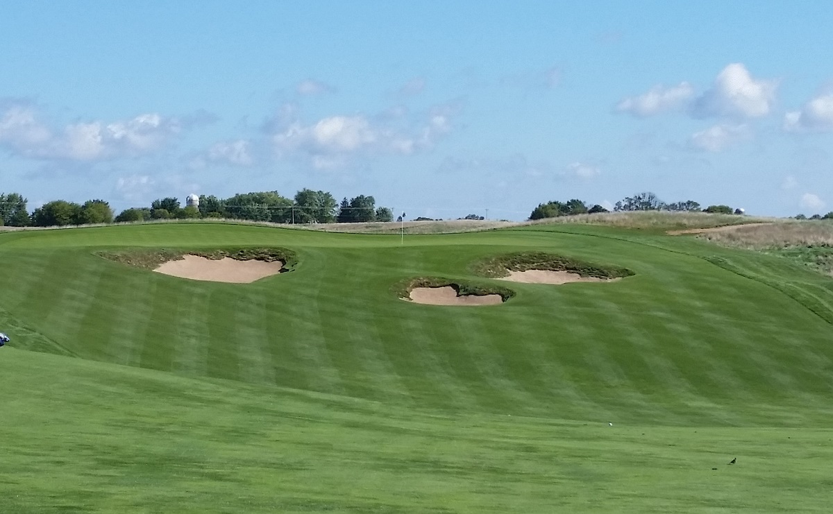 Course Options Wi