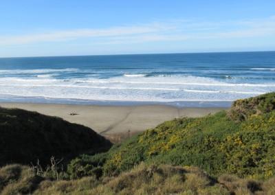 Pacific Dunes Hole 13 Beach